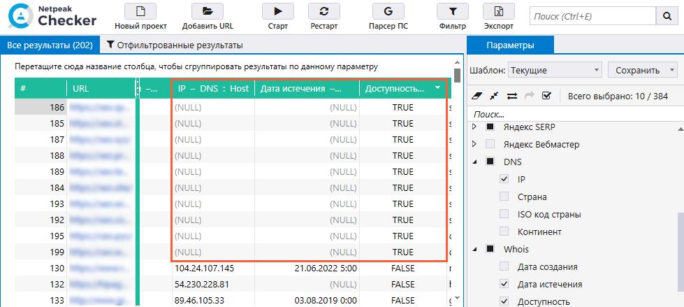 Поиск дроп-доменов через Netpeak Checker